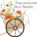Ирина У.
