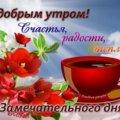 Ирина Н. В.