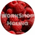 WorkShop M.