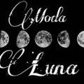 Luna M.