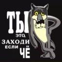 Степанида Р.