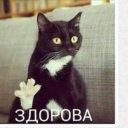 Василиса Р.