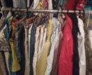 Одежда, ремни, сумки, шапки, обувь