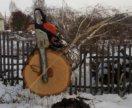 Валка аварийных деревьев