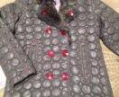 Новая куртка custo