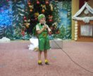 Новогодний костюм сверчка