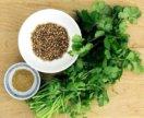 Семена кориандра (кинза) и укропа