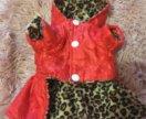 Курточка для мини чихуахуа или мини йорка