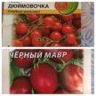 Рассада перцев и томатов