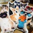 Крутые декоративные подушки