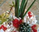"""Флорариум """"Белое с красным"""" мини-садик в подарок"""