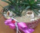 Флорариум, сухой аквариум из живых цветов
