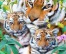 """🎨 картина по номерам """" тигры"""""""