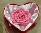 Стабилизированная роза в подарок девушке!