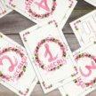 Карточки первого года жизни новорожденного (3 в 1)