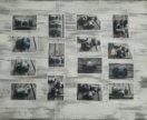 Фотографии для оформления
