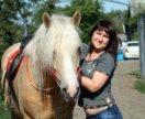 Лошадь в аренду