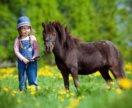 Фотосессия с пони. Советский парк