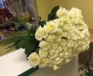 Белые белые розы с зеленой листвой