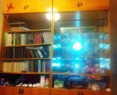 Сервант и книжный шкаф