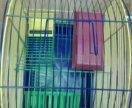 Клетка для хомячков 29х21х37