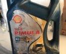 Shell rimula r5 10w40