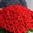 Элитные красные розы цветы