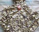 Анорак женский на лето желтый камо