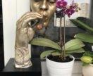 Скульптура курящее лицо