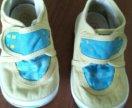 Кеды обувь