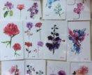 Временные тату цветы животные акварель