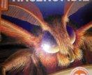 Книга насекомые 2D для детей