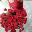 51 Красная Роза 60 см.