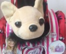 Собачка в сумочке чи чи лав новая