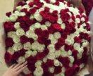 101 роза Голландская