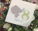 Карточки (месяца)