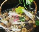 Подарочная корзина с орехами, сухофруктами и др.