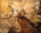 Кольцо кулон браслет