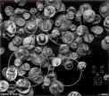 Эл.плита Zigmund&Shtain CNS 95.6 DX (Италия)