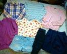 Пакет одежды, 42-44