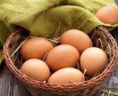 Свежее куриное яйцо