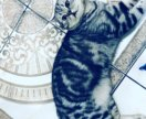 Вязка. Приглашаем на вязку к коту британцу.