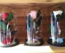 Роза в колбе, подарочная коробка 27х15 арт.76