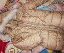 Зимняя куртка born