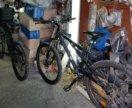 Прокат велосипедов Ботанический сад