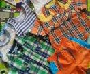 Рубашки, шорты