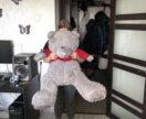 БОЛЬШОЙ медведь.
