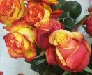 Новое поступление цветов