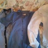 Мужские рубашки. Фото 2.