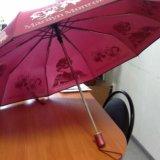 Зонтик. Фото 1. Ухта.
